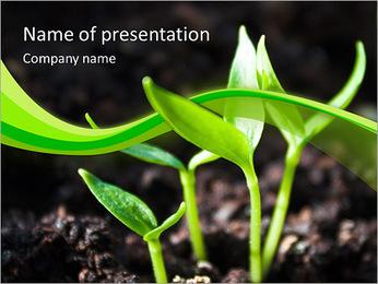 Pousses vertes Modèles des présentations  PowerPoint
