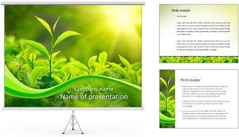 Plantes en plein soleil Modèles des présentations  PowerPoint