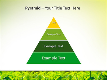 Plantes en plein soleil Modèles des présentations  PowerPoint - Diapositives 10