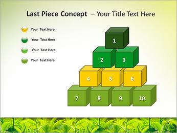 Plantes en plein soleil Modèles des présentations  PowerPoint - Diapositives 11