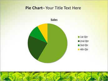 Plantes en plein soleil Modèles des présentations  PowerPoint - Diapositives 16