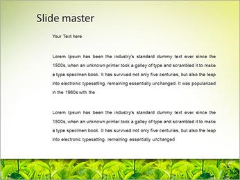Plantes en plein soleil Modèles des présentations  PowerPoint - Diapositives 2