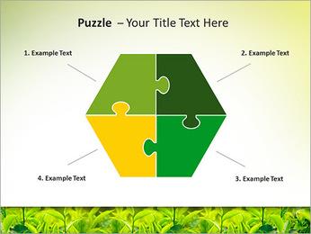 Plantes en plein soleil Modèles des présentations  PowerPoint - Diapositives 20
