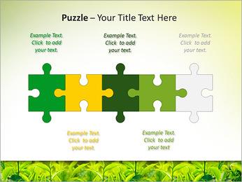 Plantes en plein soleil Modèles des présentations  PowerPoint - Diapositives 21
