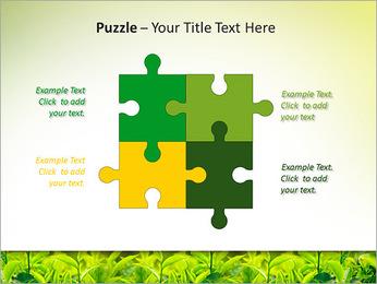 Plantes en plein soleil Modèles des présentations  PowerPoint - Diapositives 23