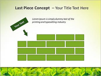 Plantes en plein soleil Modèles des présentations  PowerPoint - Diapositives 26