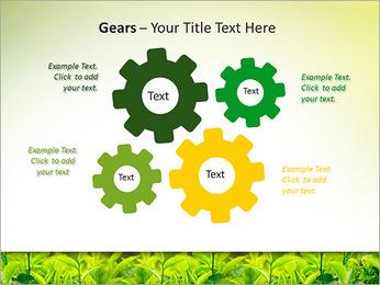 Plantes en plein soleil Modèles des présentations  PowerPoint - Diapositives 27