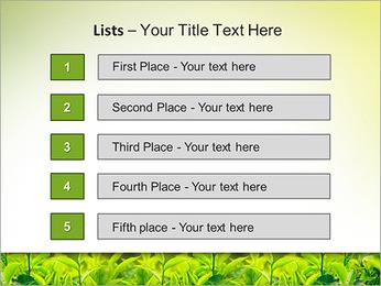 Plantes en plein soleil Modèles des présentations  PowerPoint - Diapositives 3