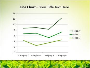 Plantes en plein soleil Modèles des présentations  PowerPoint - Diapositives 34
