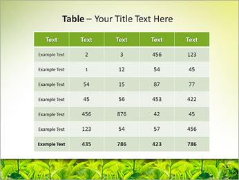 Plantes en plein soleil Modèles des présentations  PowerPoint - Diapositives 35