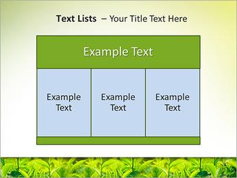 Plantes en plein soleil Modèles des présentations  PowerPoint - Diapositives 39