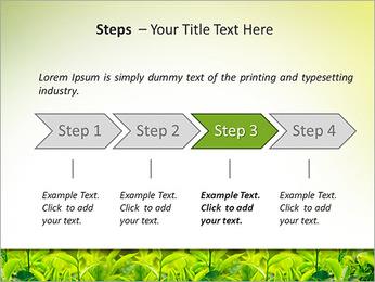 Plantes en plein soleil Modèles des présentations  PowerPoint - Diapositives 4