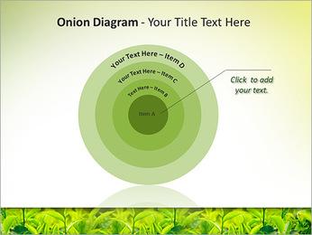 Plantes en plein soleil Modèles des présentations  PowerPoint - Diapositives 41
