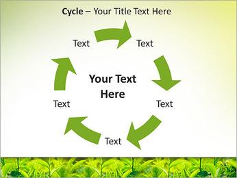 Plantes en plein soleil Modèles des présentations  PowerPoint - Diapositives 42