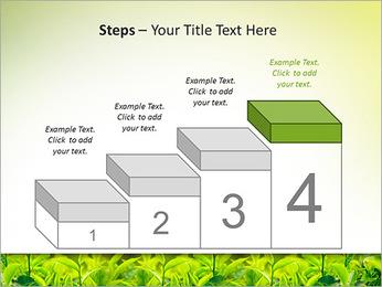 Plantes en plein soleil Modèles des présentations  PowerPoint - Diapositives 44