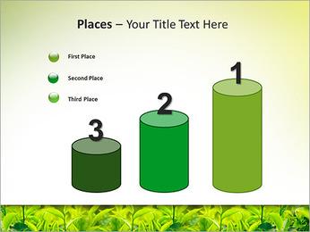 Plantes en plein soleil Modèles des présentations  PowerPoint - Diapositives 45
