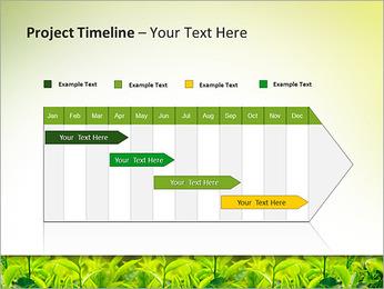 Plantes en plein soleil Modèles des présentations  PowerPoint - Diapositives 5