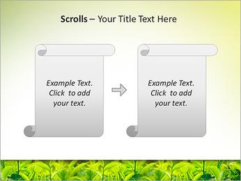 Plantes en plein soleil Modèles des présentations  PowerPoint - Diapositives 54
