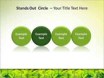 Plantes en plein soleil Modèles des présentations  PowerPoint - Diapositives 56