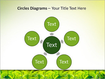 Plantes en plein soleil Modèles des présentations  PowerPoint - Diapositives 58