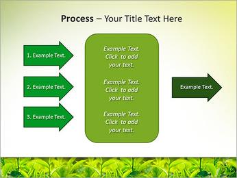 Plantes en plein soleil Modèles des présentations  PowerPoint - Diapositives 65