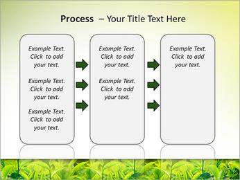 Plantes en plein soleil Modèles des présentations  PowerPoint - Diapositives 66