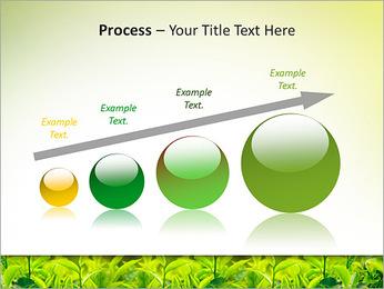 Plantes en plein soleil Modèles des présentations  PowerPoint - Diapositives 67
