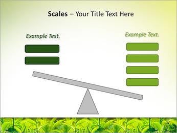 Plantes en plein soleil Modèles des présentations  PowerPoint - Diapositives 69