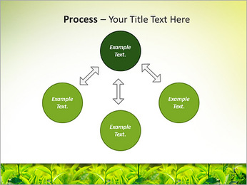 Plantes en plein soleil Modèles des présentations  PowerPoint - Diapositives 71