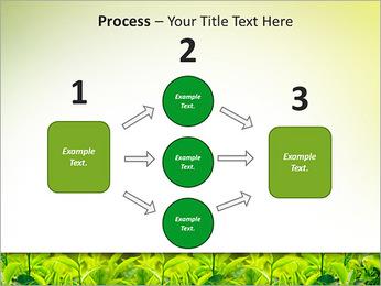 Plantes en plein soleil Modèles des présentations  PowerPoint - Diapositives 72