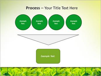 Plantes en plein soleil Modèles des présentations  PowerPoint - Diapositives 73