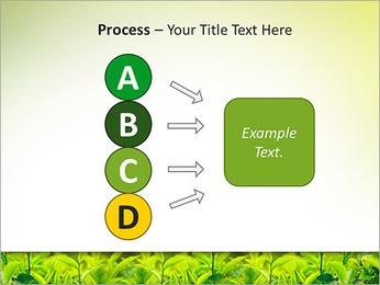 Plantes en plein soleil Modèles des présentations  PowerPoint - Diapositives 74