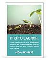 Plant In Soil Les clichés des annonces publicitaire