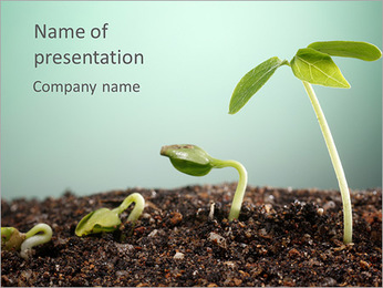 Plant In Soil PowerPoint Template