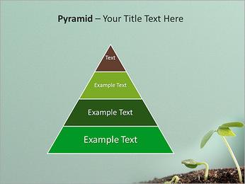 Plante dans le sol Modèles des présentations  PowerPoint - Diapositives 10
