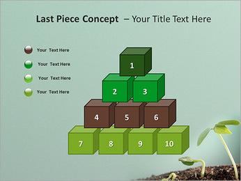 Plante dans le sol Modèles des présentations  PowerPoint - Diapositives 11
