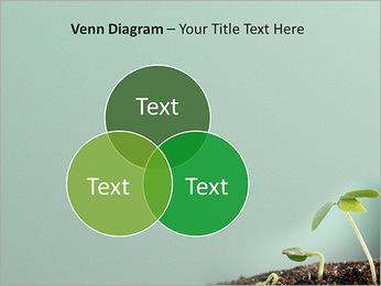Plante dans le sol Modèles des présentations  PowerPoint - Diapositives 13