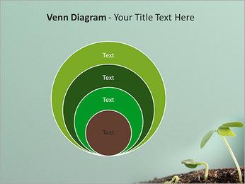 Plante dans le sol Modèles des présentations  PowerPoint - Diapositives 14
