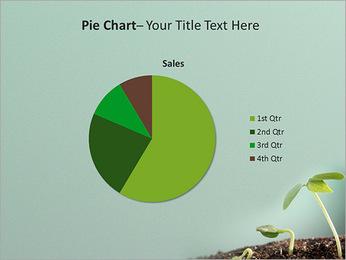 Plante dans le sol Modèles des présentations  PowerPoint - Diapositives 16