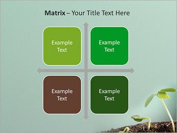 Plante dans le sol Modèles des présentations  PowerPoint - Diapositives 17