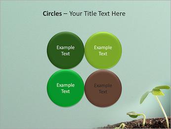 Plante dans le sol Modèles des présentations  PowerPoint - Diapositives 18