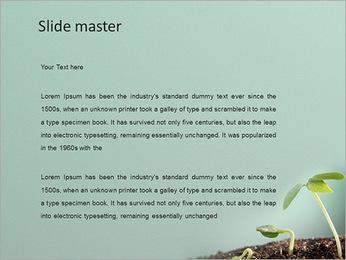 Plante dans le sol Modèles des présentations  PowerPoint - Diapositives 2