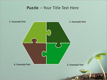 Plante dans le sol Modèles des présentations  PowerPoint - Diapositives 20