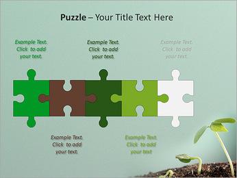 Plante dans le sol Modèles des présentations  PowerPoint - Diapositives 21