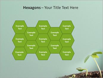 Plante dans le sol Modèles des présentations  PowerPoint - Diapositives 24