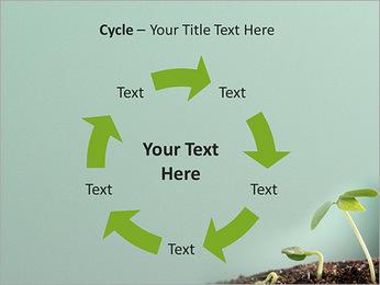 Plante dans le sol Modèles des présentations  PowerPoint - Diapositives 42