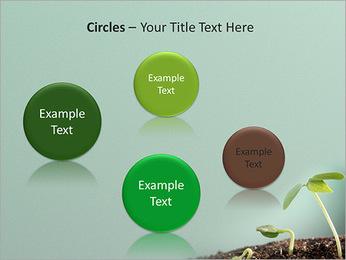 Plante dans le sol Modèles des présentations  PowerPoint - Diapositives 57