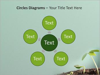 Plante dans le sol Modèles des présentations  PowerPoint - Diapositives 58