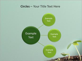 Plante dans le sol Modèles des présentations  PowerPoint - Diapositives 59