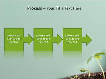 Plante dans le sol Modèles des présentations  PowerPoint - Diapositives 68